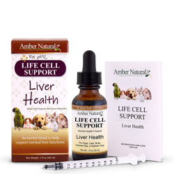 Life Cell Support for healthy liver function