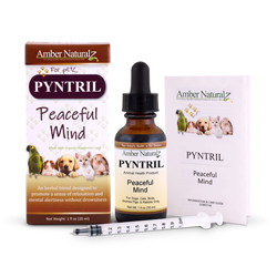 Pyntril promotes calmness without drowsiness, can be used with DermaNerv