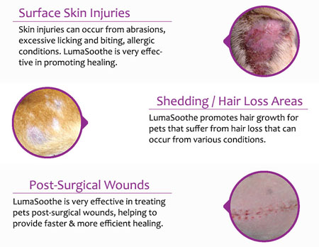 LumaSoothe for skin conditions & wounds