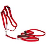 Walk In Sync Harness & Get A Grip Leash
